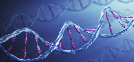 11_genetic algorithm